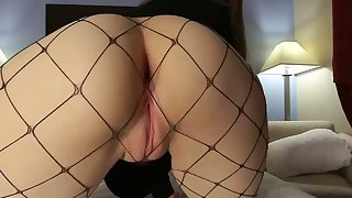 Sexy Bunny Hops And Humps Respecting Orgasm